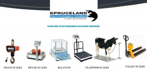 Spruceland Technologies Group Ltd