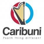 Caribuni Investments Ltd