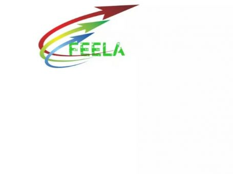 Feela logistics and delivery services
